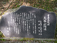 Sp1020453