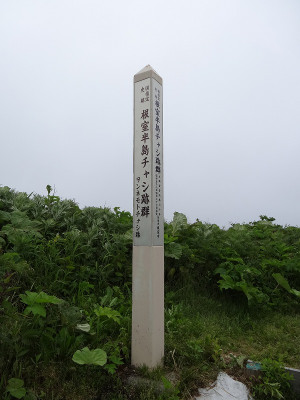 Dsc02935